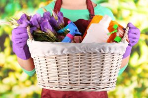Basket full of cleaning supplies
